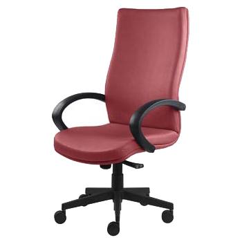Деректорски стол Ergo
